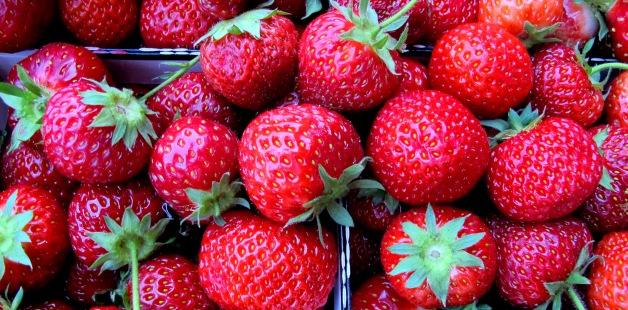 IMG_1826_strawberriescloseupKGcrop