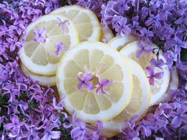 IMG_4277_lemonsandlilacs