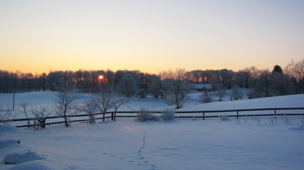 The sunset was gorgeous. Those are rabbit tracks in the snow.
